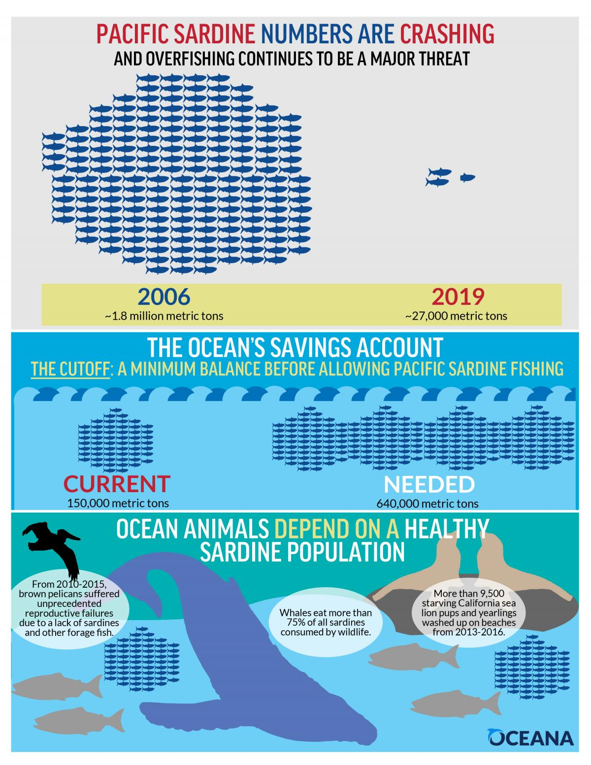 The Modern Day Pacific Sardine Collapse How To Prevent A Future Crisis Oceana Usa