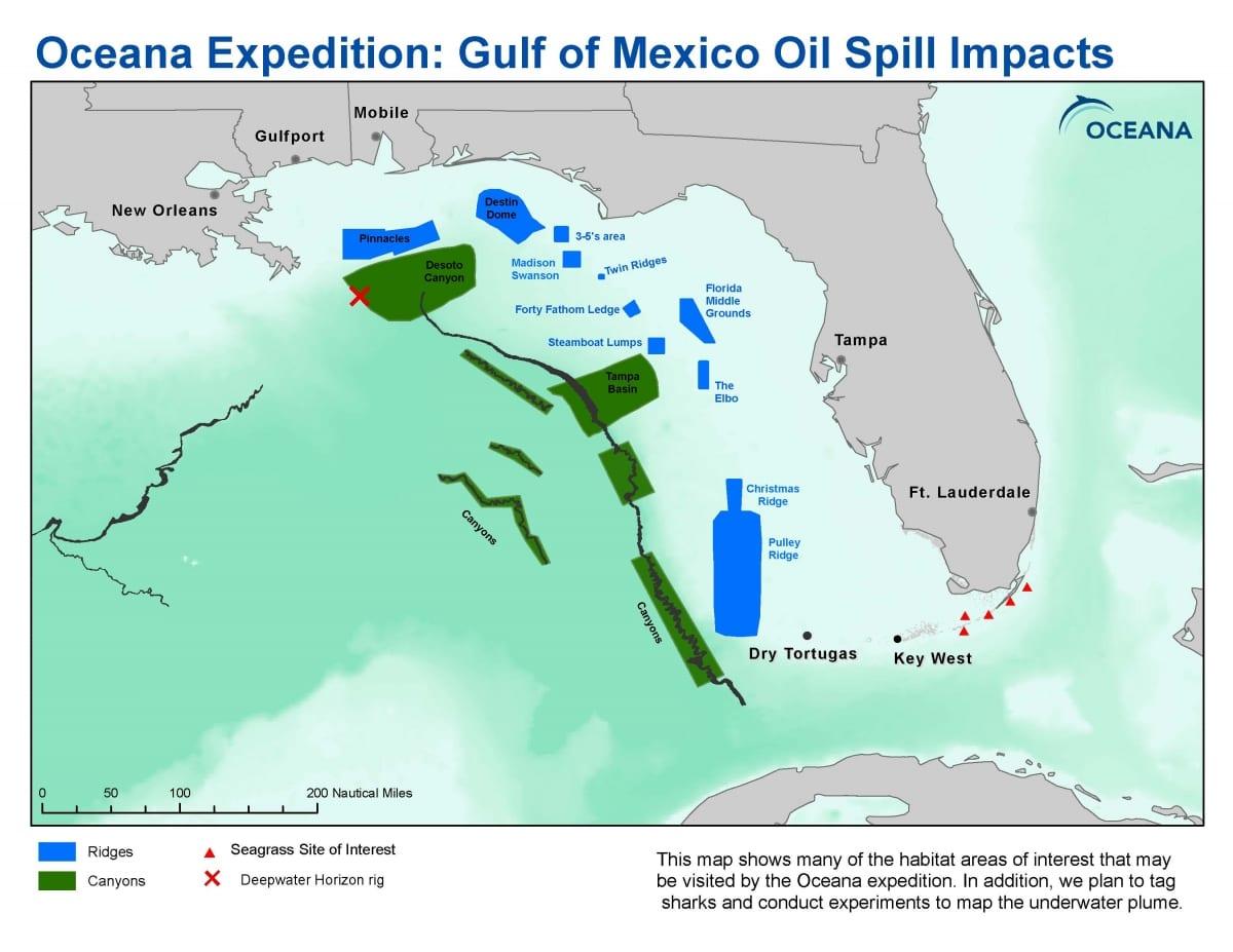 Florida Universities Map.Gulf Of Mexico Places Oceana Usa